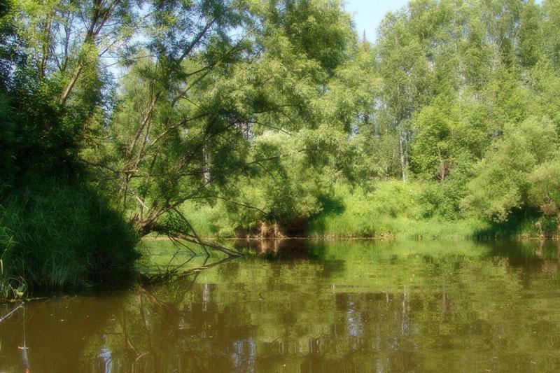 рыбалка на реке вильва глухая